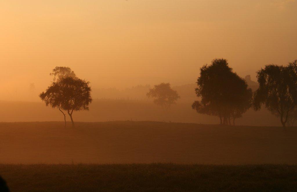 Mists of Deshar
