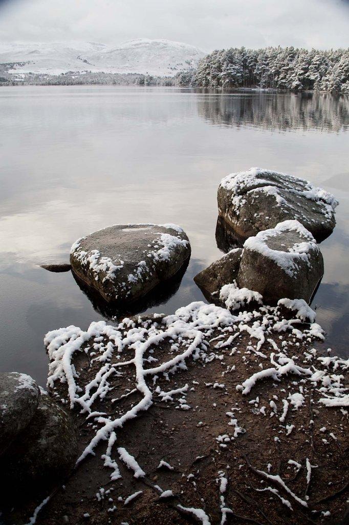 """""""Granite trio"""", Loch Garten"""