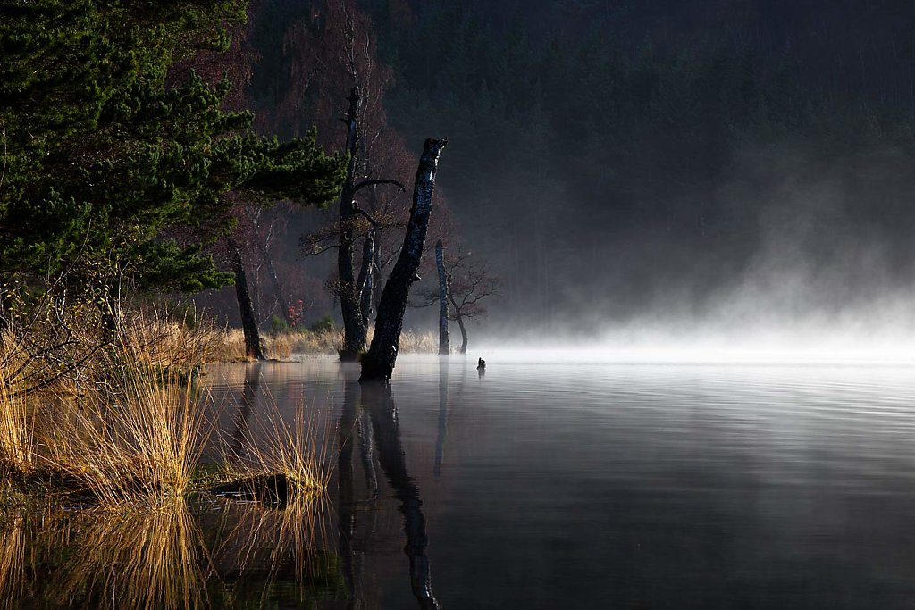 Autumn ripples, Loch Pityoulish